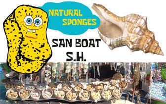 San Boat – Handel med naturlige svamper og skjell